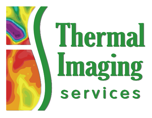 Main Logo - Thermal Imaging Texas - Angel Marlow - Houston, TX - Thermography - Holistic Health - Disease Prevention